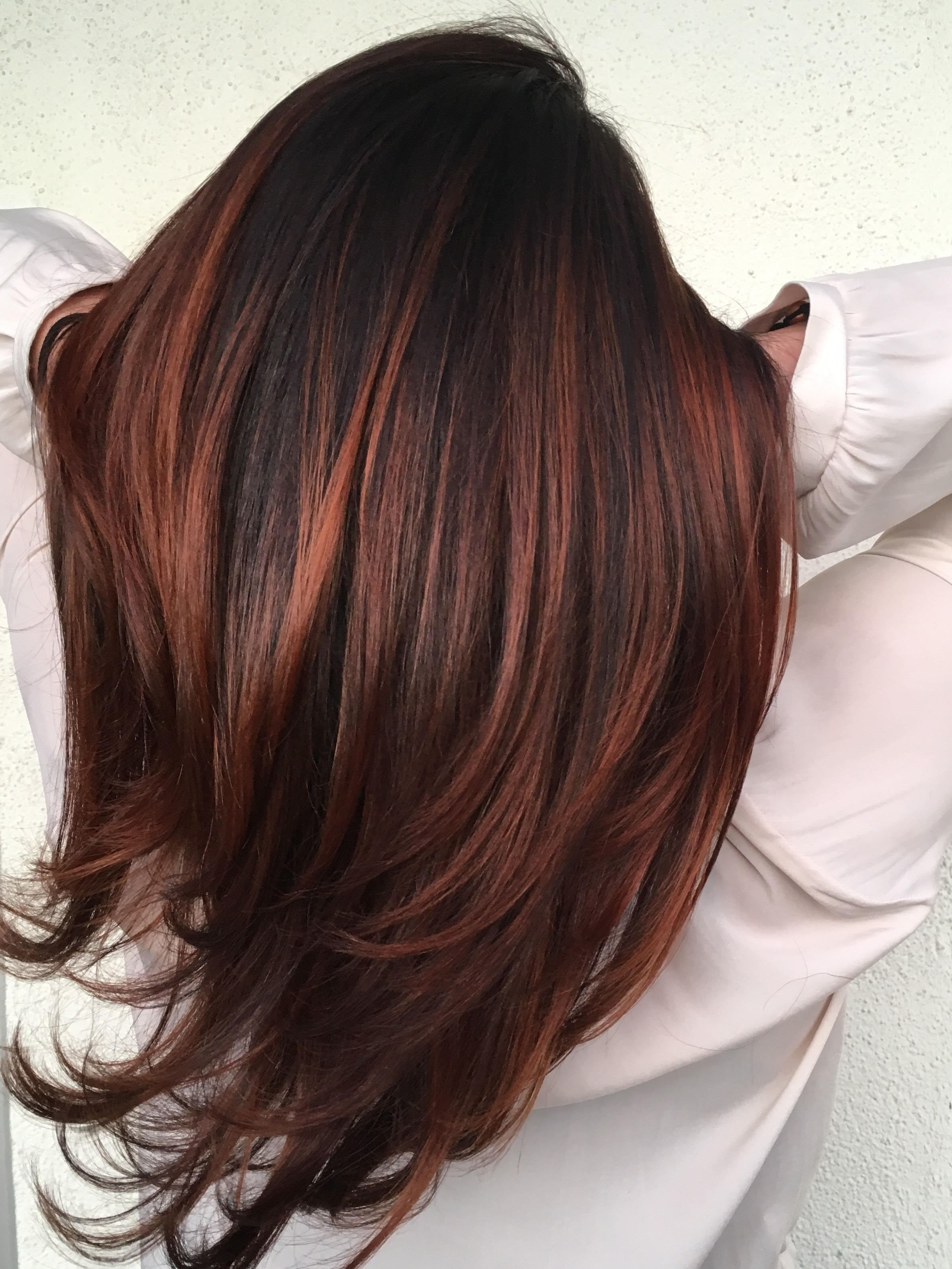45 Hair Color Ideas For Brunettes For Fall Winter Summer | Hair In Soft Auburn Look Hairstyles (View 2 of 20)