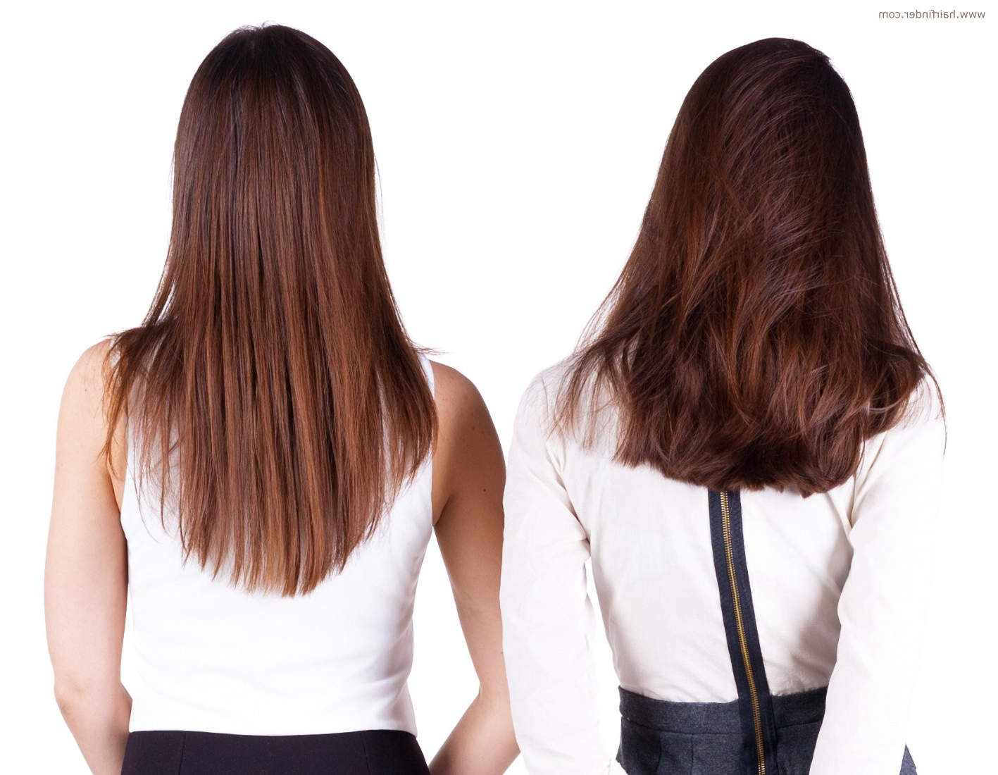 Cut The Back Of Long Hair In A U Shape, V Shape Or A Straight Line Inside Short Bob Hairstyles With Long V Cut Layers (View 8 of 20)