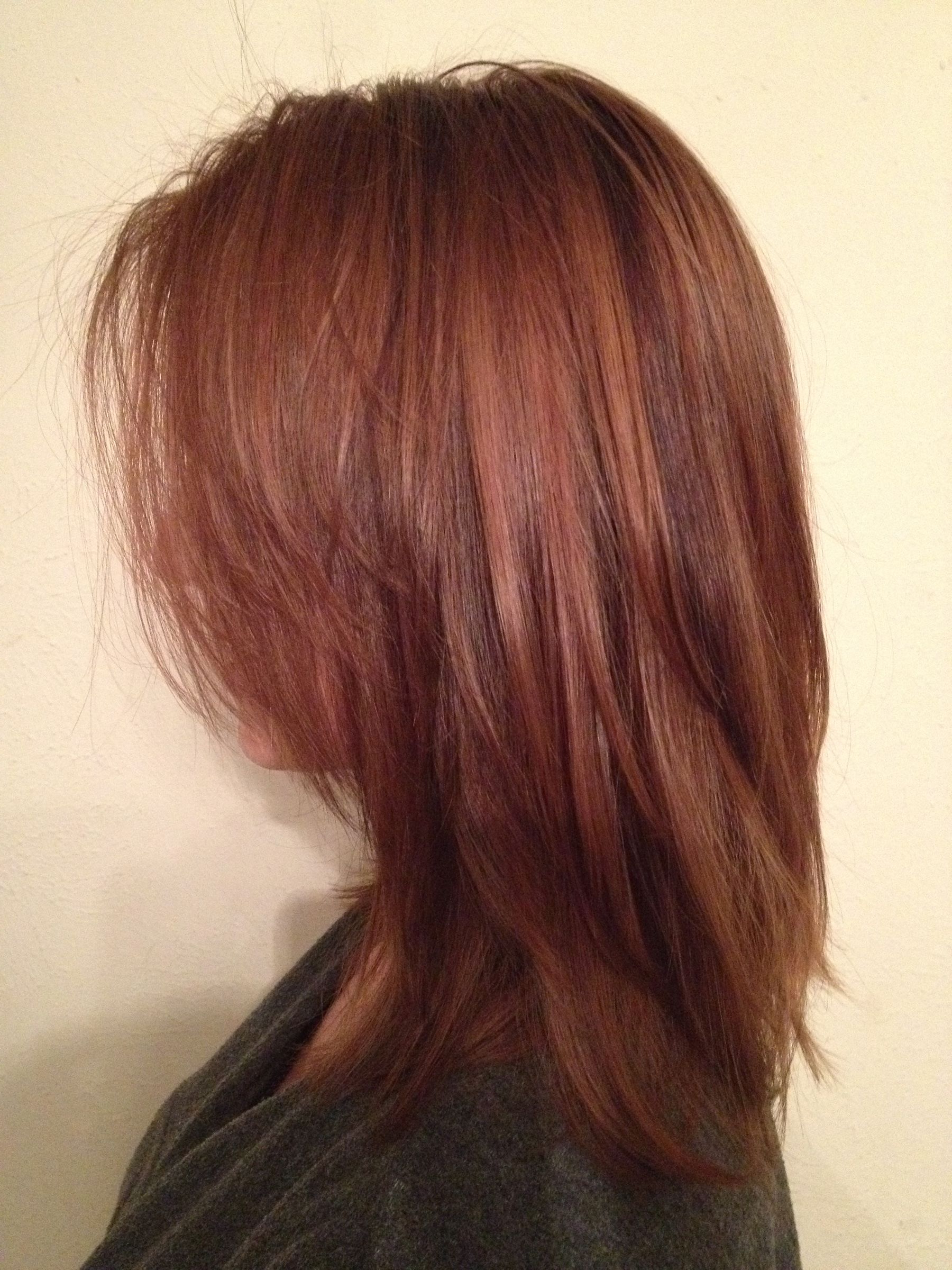 Pictures Of Auburn Hair With Highlights And Lowlights – Hairs With Soft Auburn Look Hairstyles (View 3 of 20)