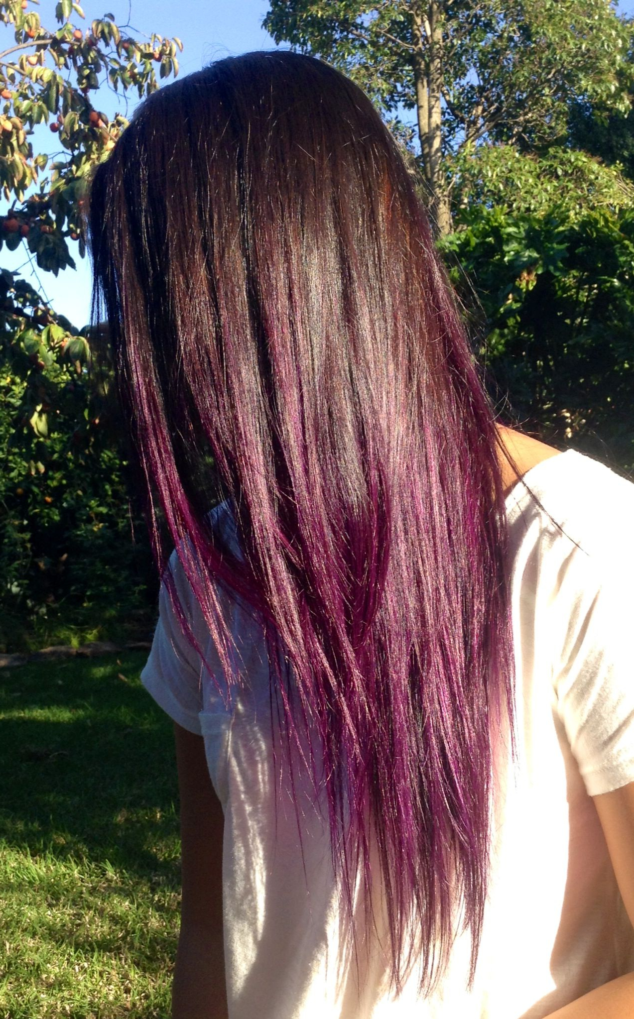 Purple Ombre Hair, Manic Panic Purple Haze | Hairstyles In 2018 Within Purple Haze Hairstyles (View 3 of 20)