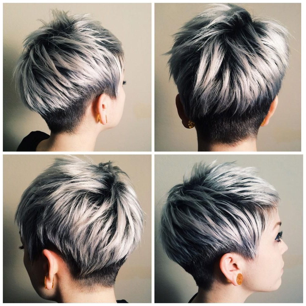 The Silver Journey – Career In 2018 | Silver/platinum Hair Color For Two Tone Spiky Short Haircuts (View 18 of 20)
