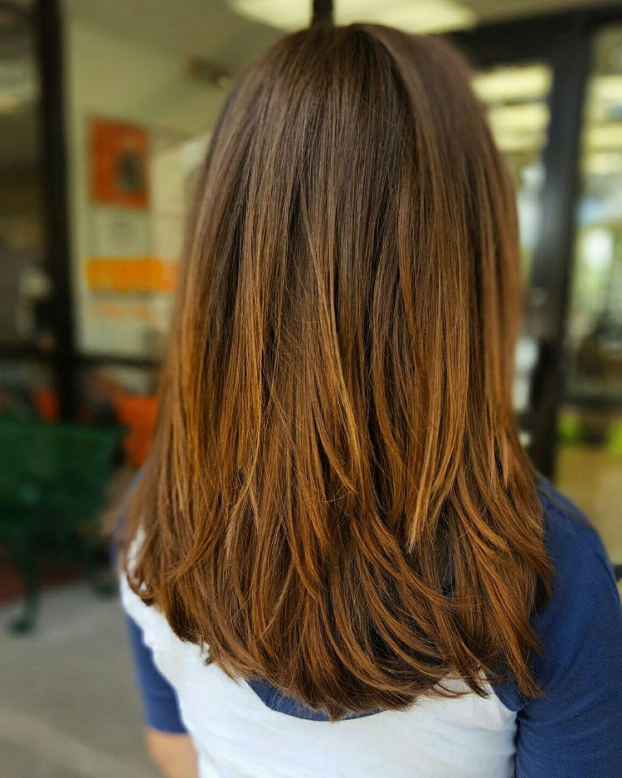 2018 Brunette Medium Length Hairstyles Fresh Layered Haircut Layers In Most Recent Brunette Medium Hairstyles (View 2 of 20)
