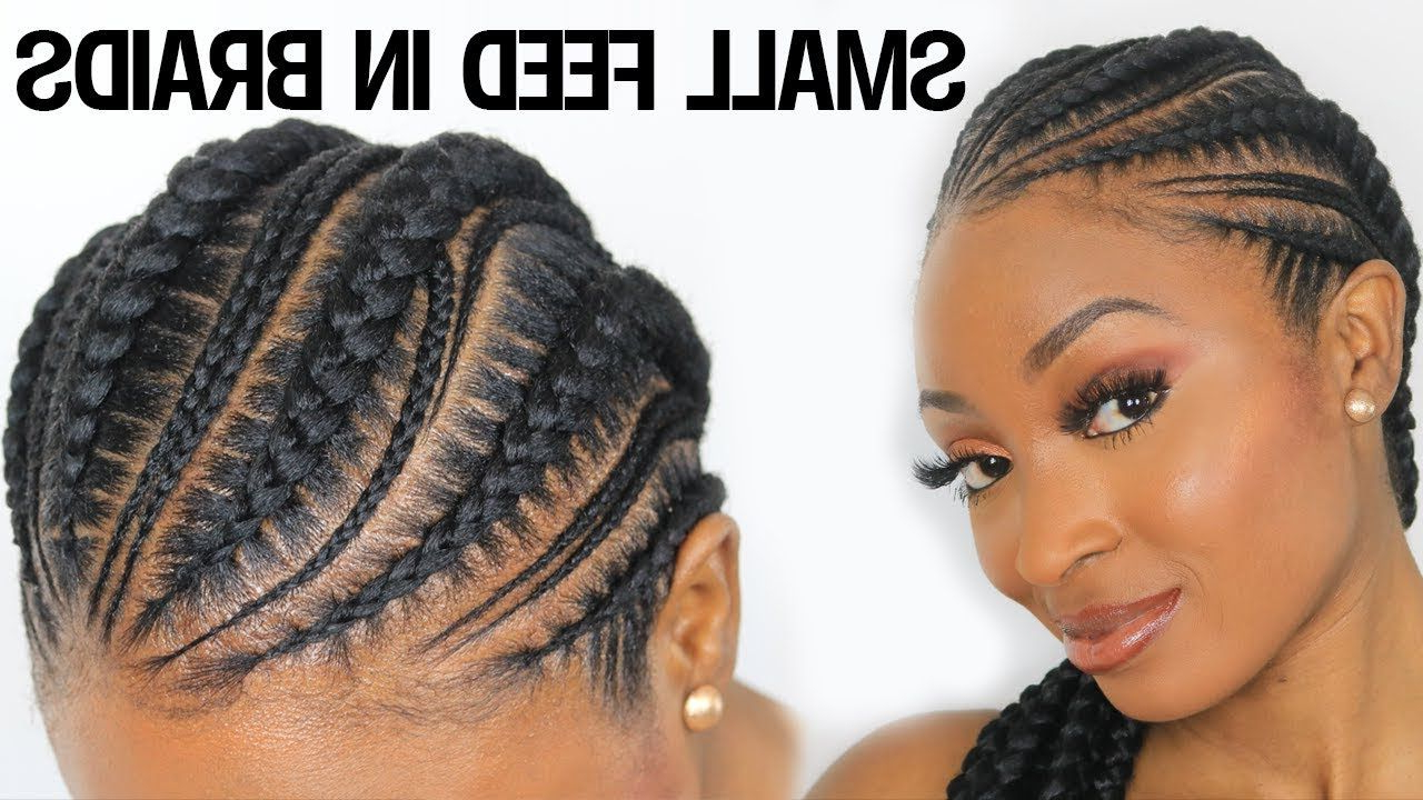Best And Newest Mini Braided Babe Mohawk Hairstyles With Small Feed In Braids, Ghana Braids, Cornrows Hairstyles Detailed (View 3 of 20)