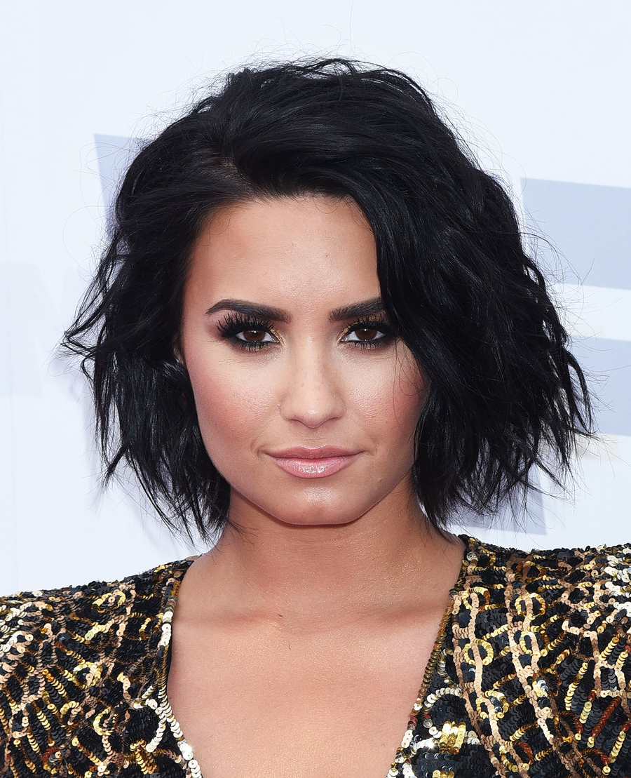 Demi Lovato's Changing Hair (Gallery 5 of 20)