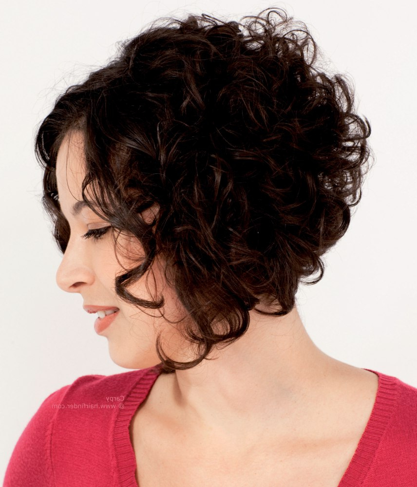 Haircuts, Hairstyles 2019 With Regard To Most Current Curly Layered Bob Hairstyles (View 9 of 20)