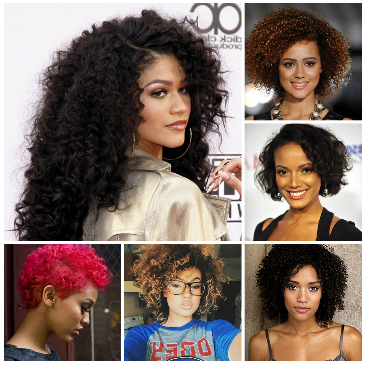 Hairstyles For Women 2019, Haircuts Inside Current Curly Black Medium Hairstyles (View 9 of 20)