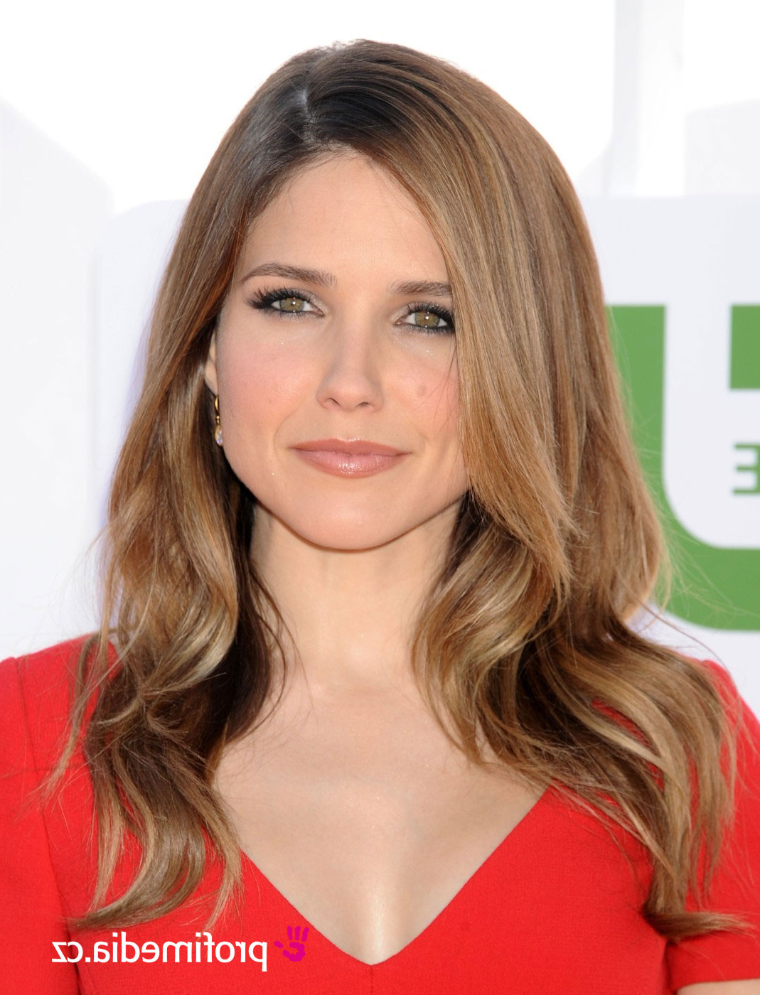 Hairstylo Within Recent Sophia Bush Medium Hairstyles (View 7 of 20)
