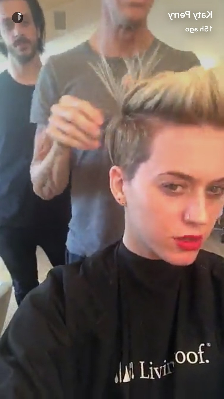 Katy Perry Now Has An Insanely Cool Undercut Pixie Haircut (View 4 of 20)