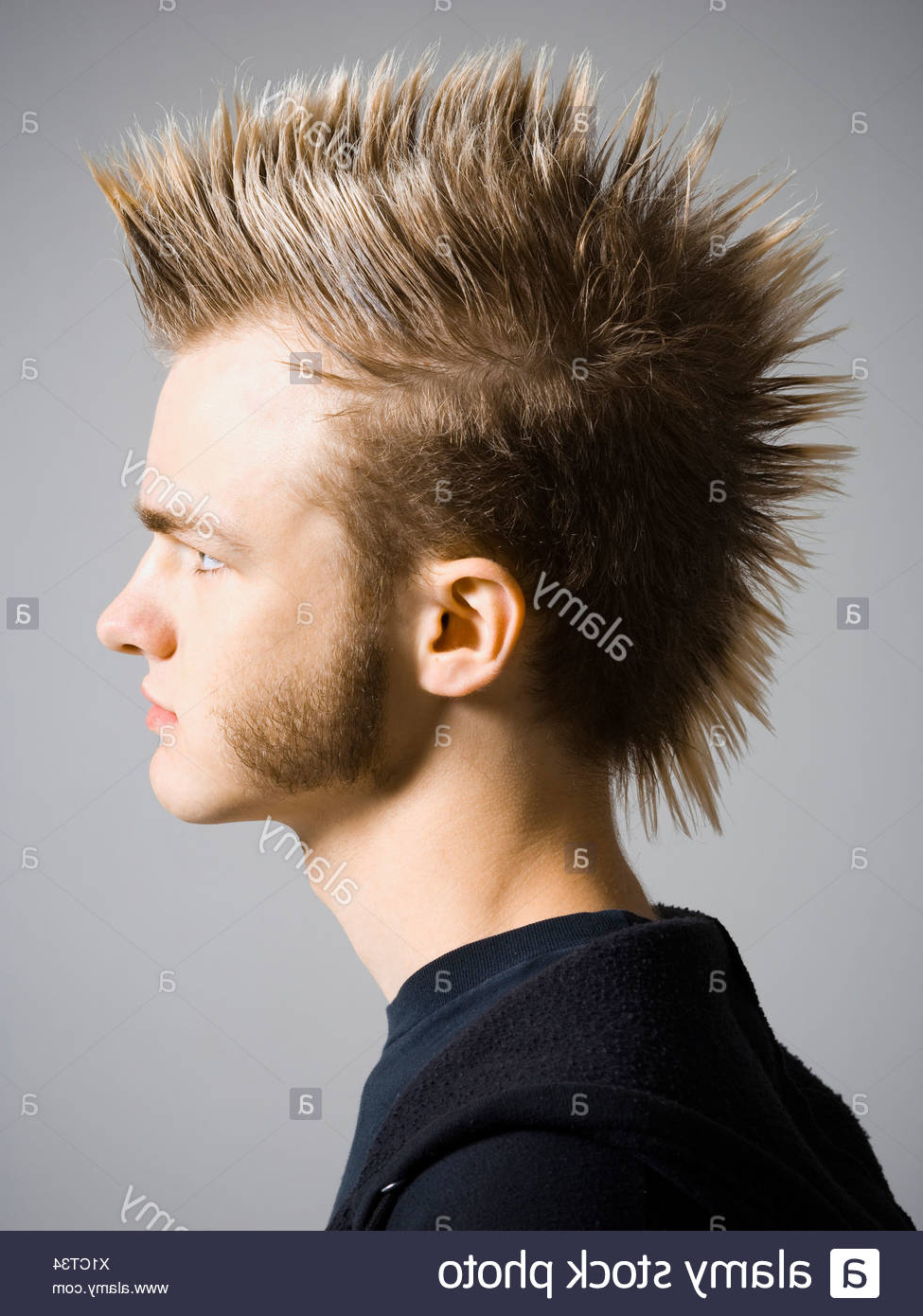 Most Recent Braided Tower Mohawk Hairstyles With Mohawk Stock Photos & Mohawk Stock Images – Alamy (View 11 of 20)