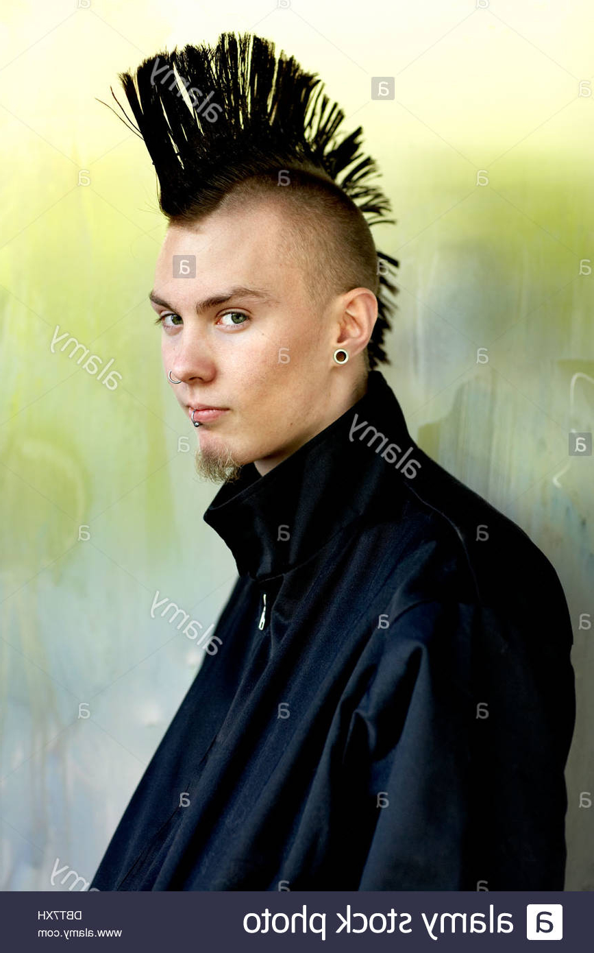 Most Recently Released Work Of Art Mohawk Hairstyles Inside Portrait Of Young Man With Mohawk Hairstyle Stock Photos & Portrait (View 11 of 20)