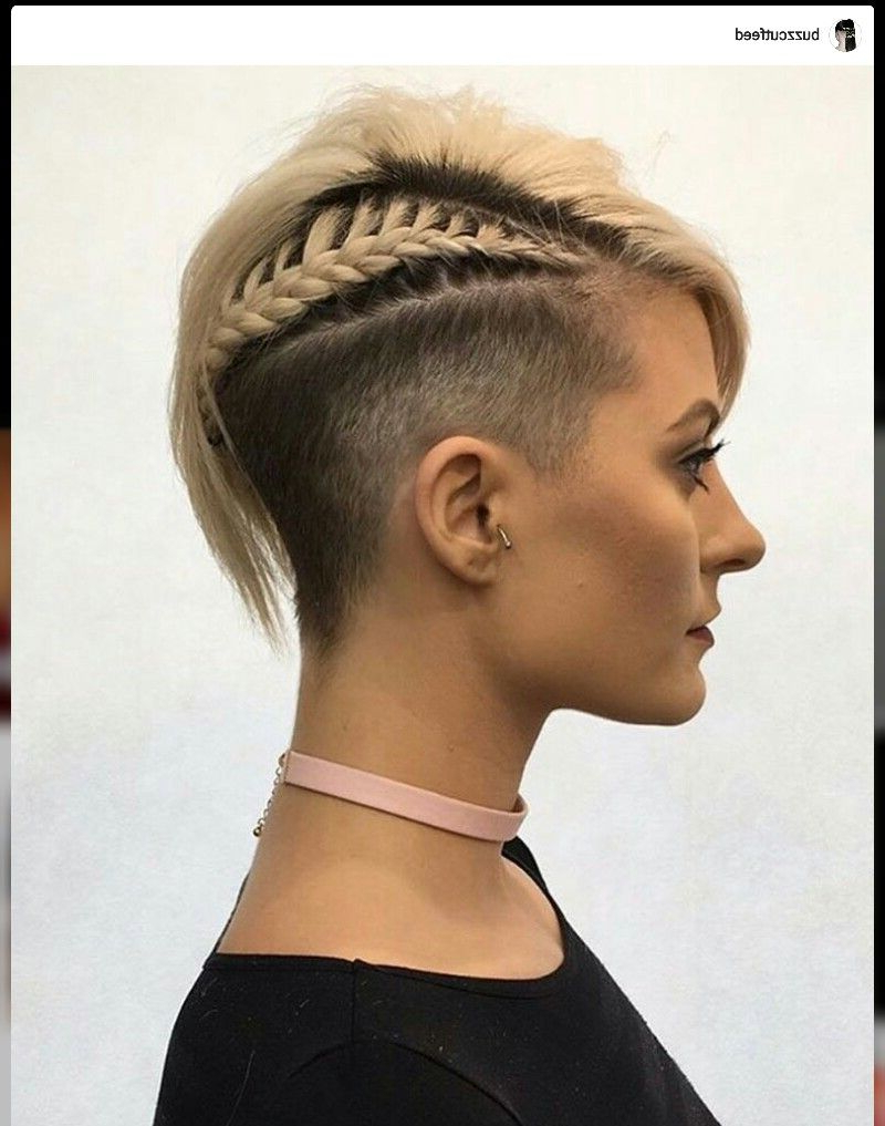 Most Up To Date Mini Braided Babe Mohawk Hairstyles In Undercut Hairstyles, Side Cut, Shaved Sides, Side Braid, Pixie Cut (View 15 of 20)