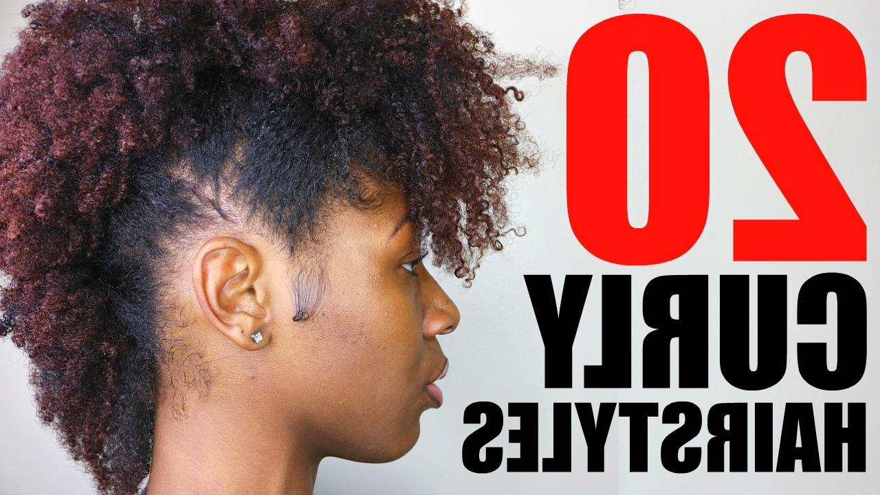 Newest Medium Haircuts For Naturally Curly Black Hair For 20 Curly/ Natural Hairstyles (View 17 of 20)