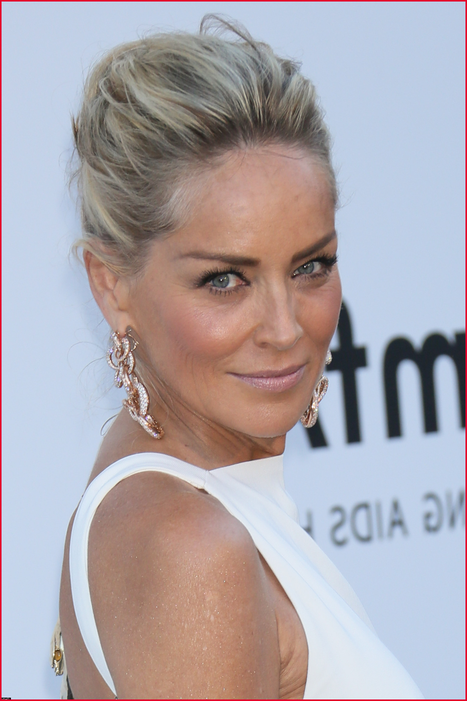 Sharon Stone Hair Color 321441 Sharon Stone Hair Color 98 With In Popular Sharon Stone Medium Haircuts (View 16 of 20)