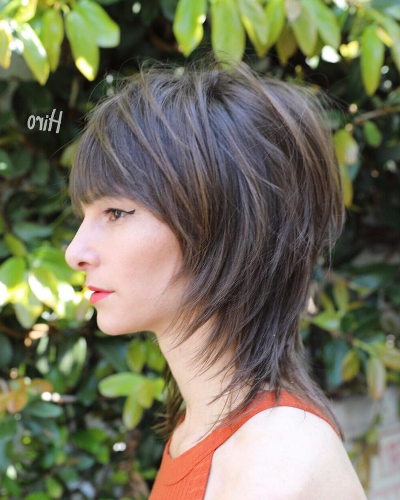 Well Known Brunette Messy Shag Hairstyles Within Women's Shaggy Banged Mullet With Face Framing Fringe On Brunette (View 18 of 20)