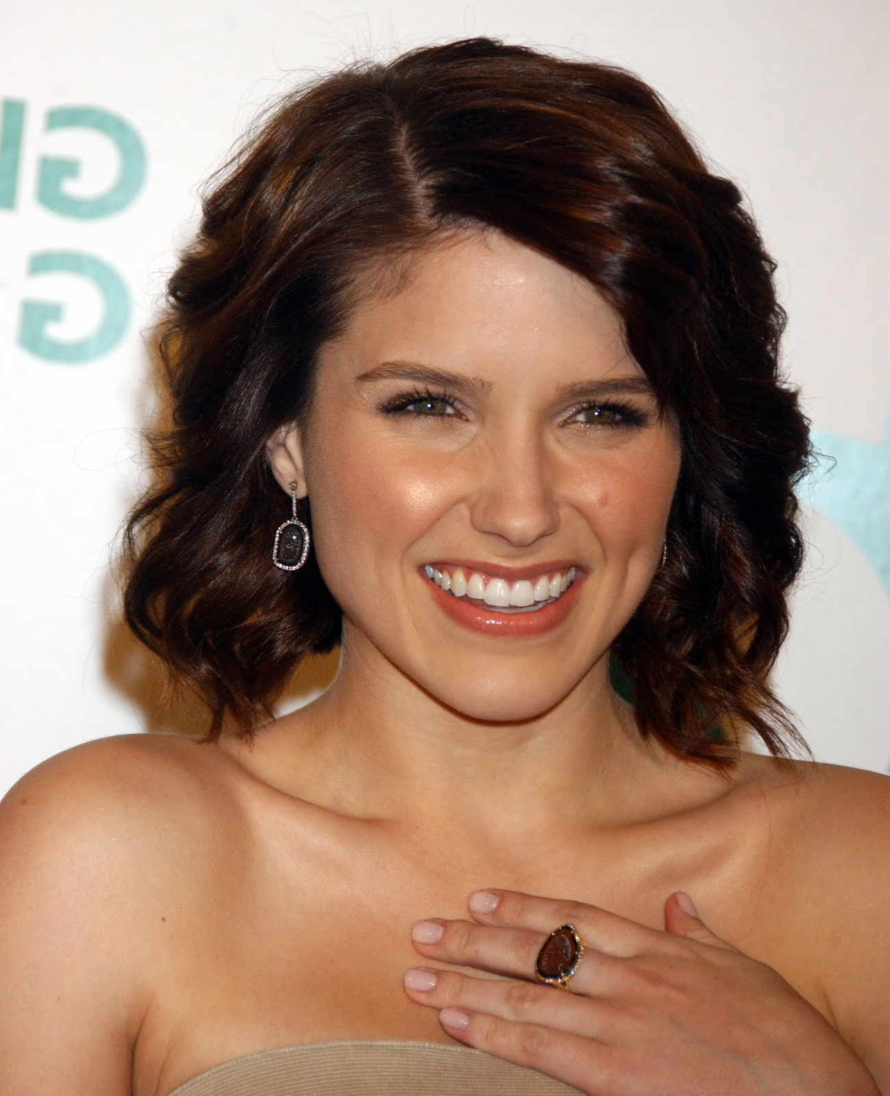 Well Known Sophia Bush Medium Hairstyles Regarding Hairstyles, Braids And Hair Style Ideas: Sophia Bush Hairstyles  (View 20 of 20)