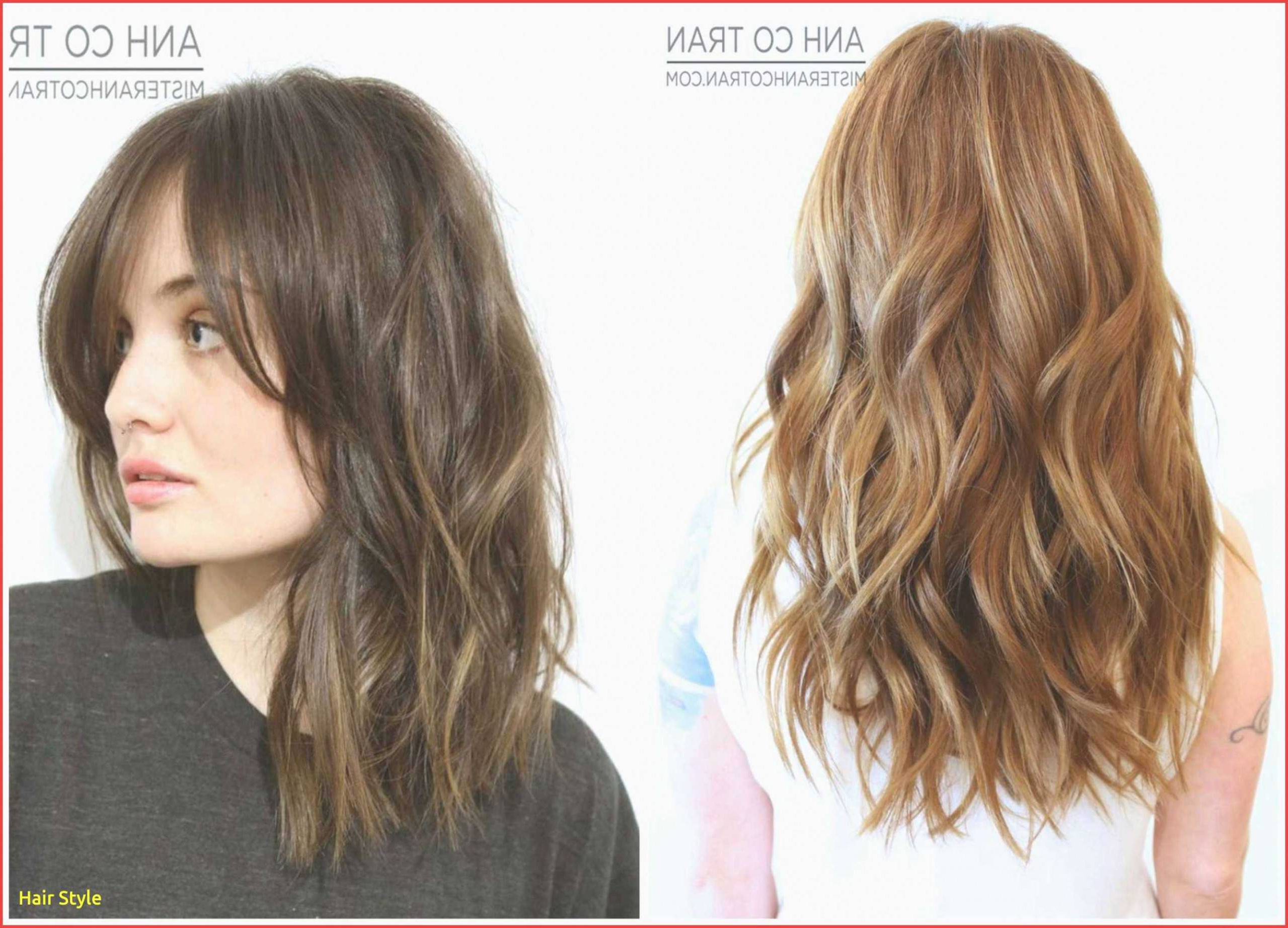 Well Liked Half Long Half Medium Hairstyles For Fine Medium Length Hairstyles New 20 Fresh Hairstyles For Half Long (View 19 of 20)
