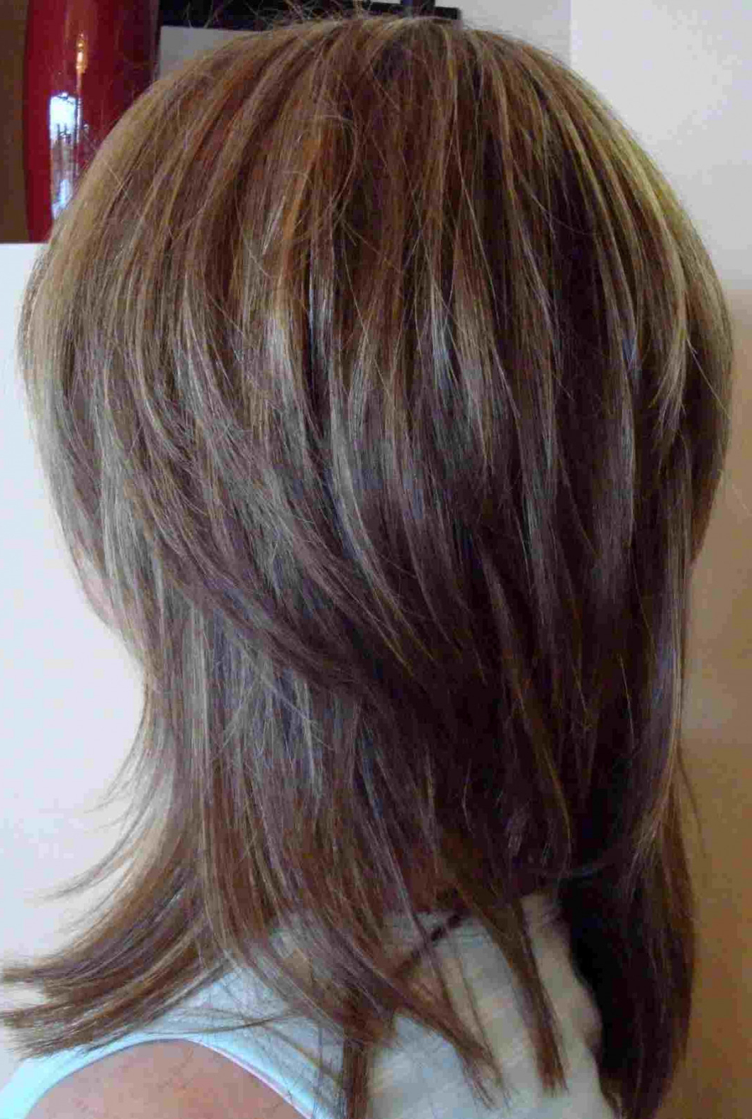Well Liked V Shaped Layered Medium Haircuts Pertaining To Medium Layered Hair Back View V Shape Rhwebsignsucom Afro Hairstyles (View 19 of 20)