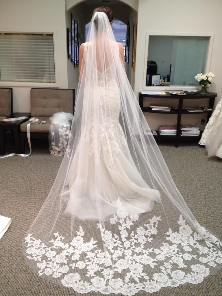 2015 New White Ivory Cathedral Length Lace Edge Bride Wedding Bridal For 2017 Wedding Hairstyles With Extra Long Veil With A Train (View 2 of 20)