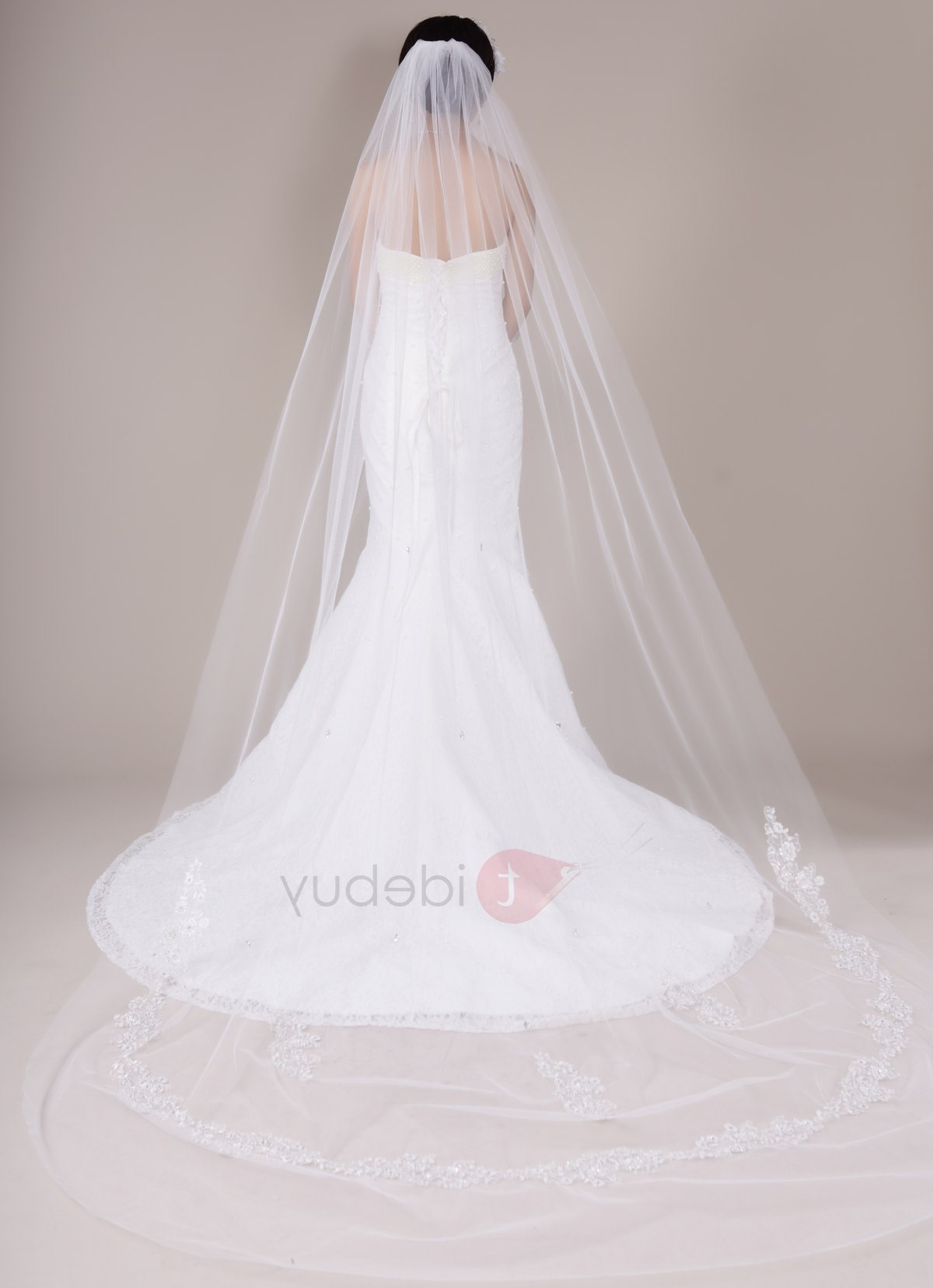 Best And Newest Wedding Hairstyles With Extra Long Veil With A Train For New Cathedral Train Long Wedding Veil, Tulle Bridal Veil : Tidebuy (View 20 of 20)