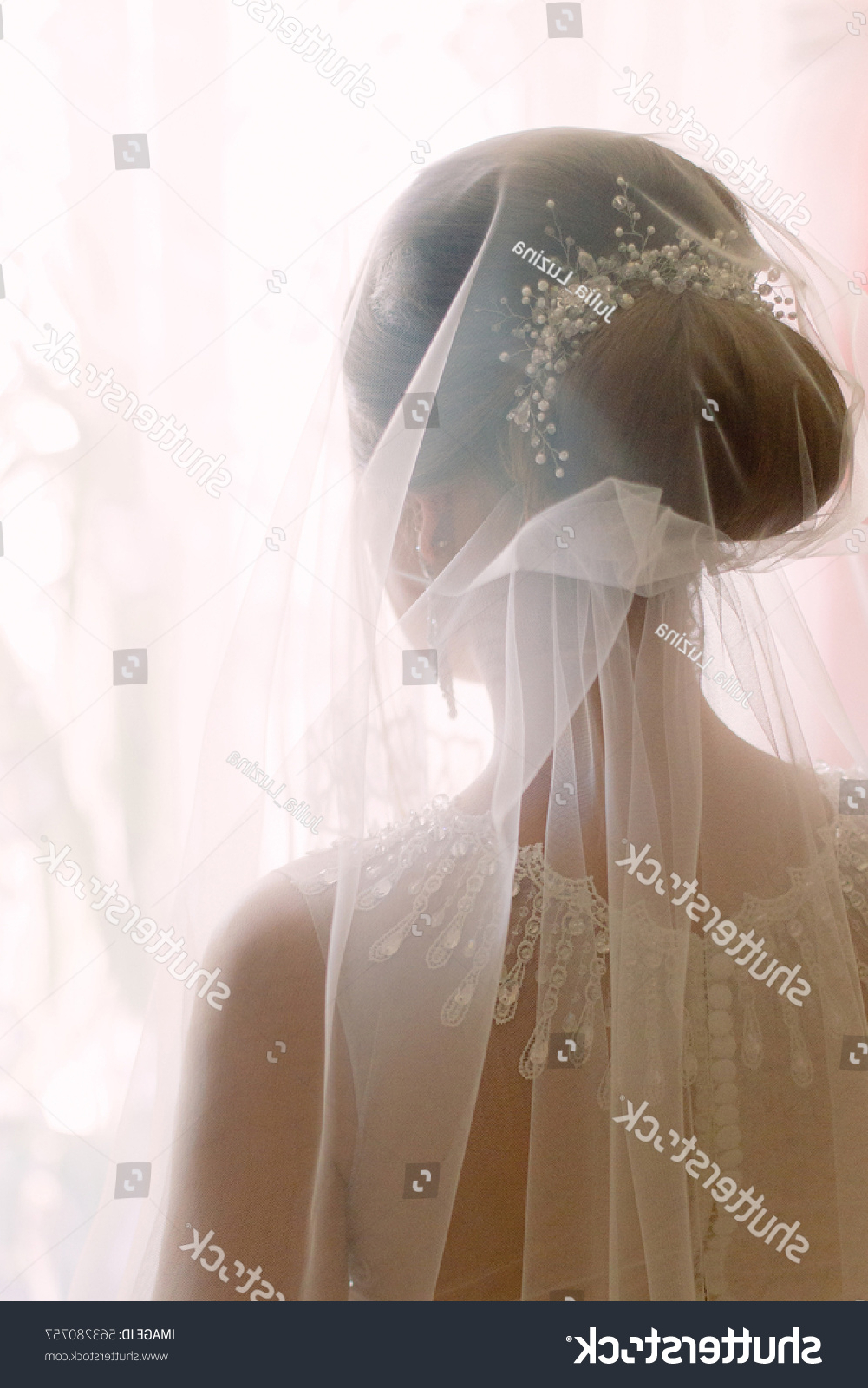 Tender Wedding Stylish Hairstyle Accessories Veil Stock Photo (Edit In Recent Tender Bridal Hairstyles With A Veil (View 17 of 20)