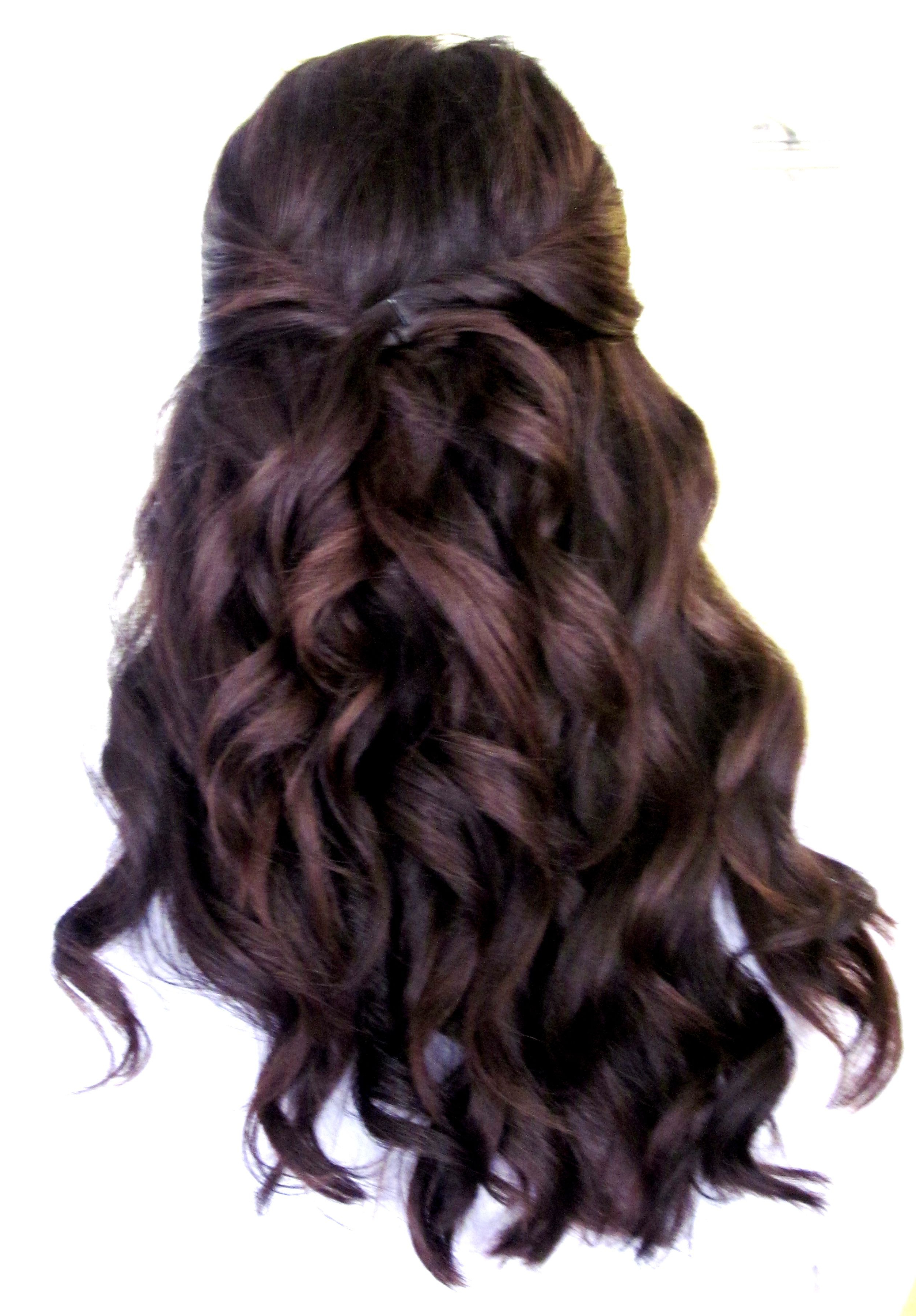 Featured Photo of Pinned Brunette Ribbons Bridal Hairstyles