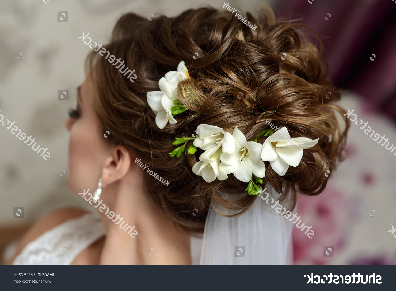 Wedding Hair Styling Brownhaired Bride Curly Stock Photo (edit Now In Preferred Curly Wedding Updos With Flower Barrette Ties (View 12 of 20)