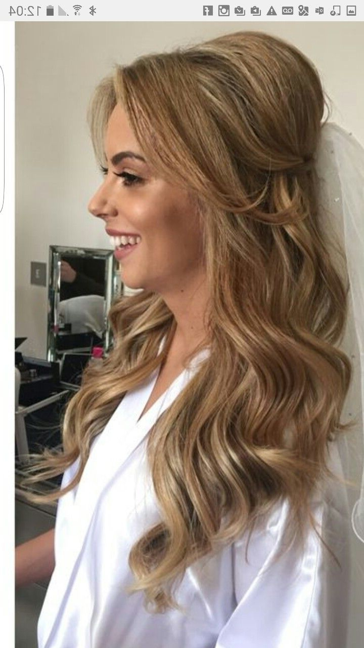 Wedding Hairstyles Inside Well Known Veiled Bump Bridal Hairstyles With Waves (View 19 of 20)