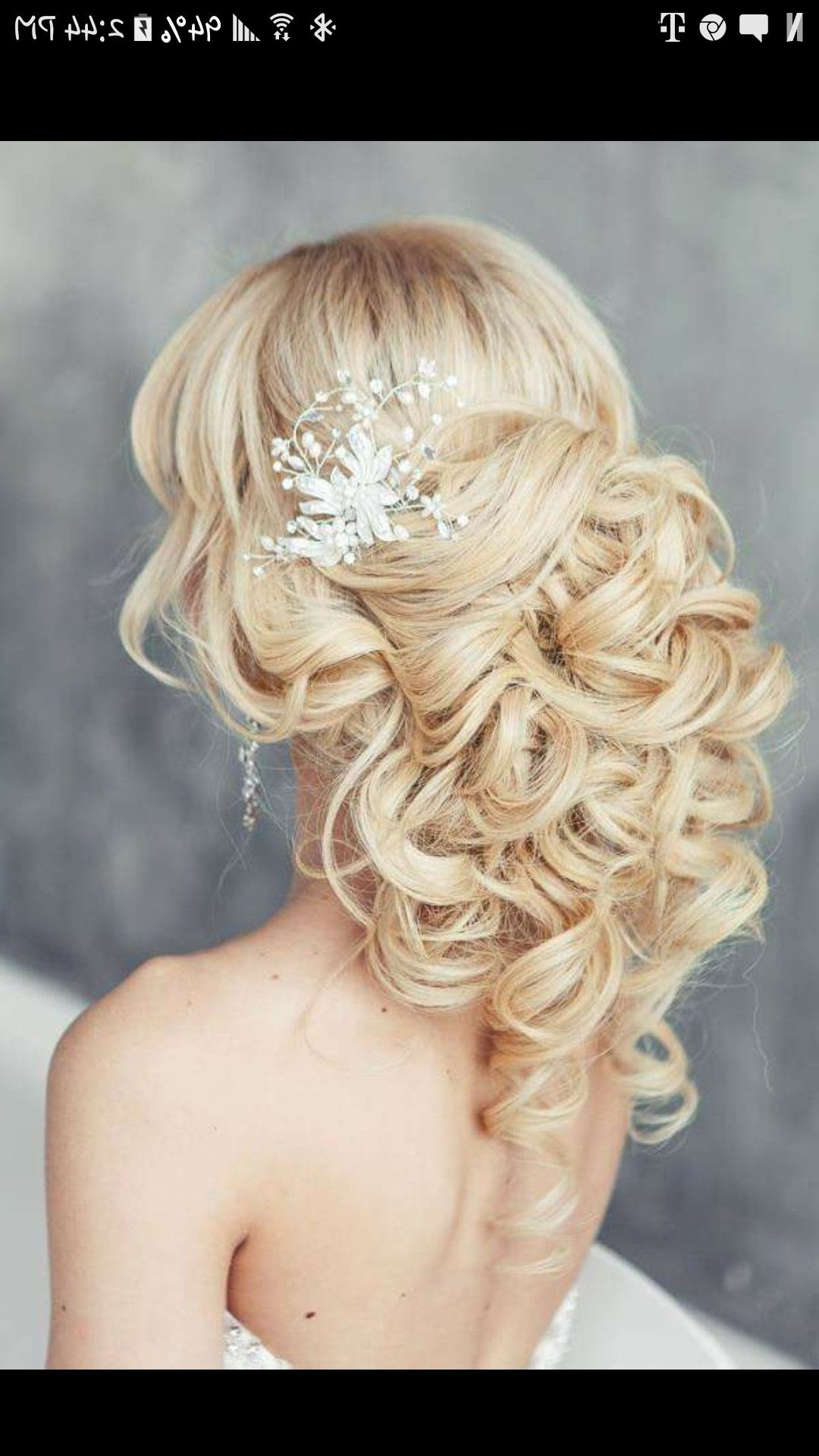 Wedding Within Trendy Large Curly Bun Bridal Hairstyles With Beaded Clip (View 19 of 20)