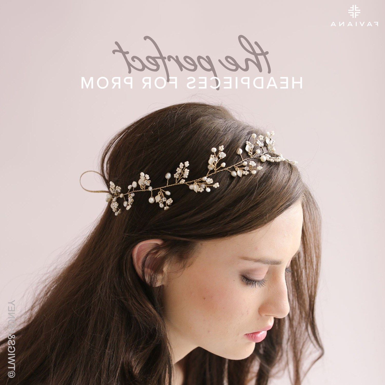 2017 Floral Braid Crowns Hairstyles For Prom Inside The Perfect Headpieces For Prom (View 1 of 20)