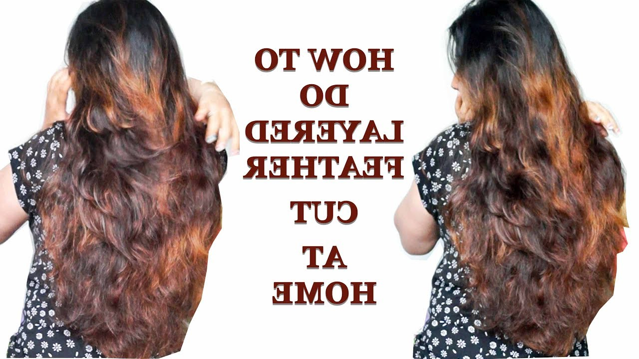 How To Do Layered Feather Cut At Home In Hindi – Youtube Throughout Current Long Feathered Haircuts With Layers (Gallery 20 of 20)