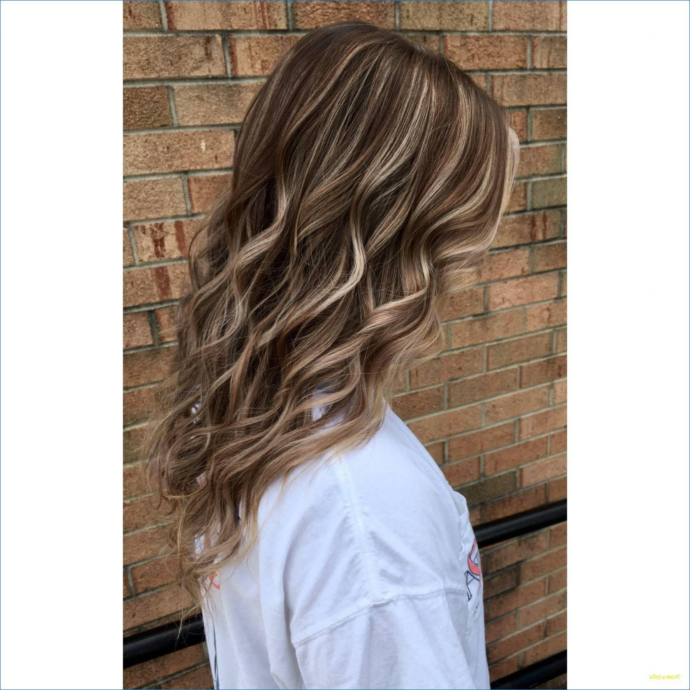 Most Popular Loose Layers Hairstyles With Silver Highlights Throughout Hairstyles : Dark Brown Hair Hairstyles With Silver Blonde (View 15 of 20)