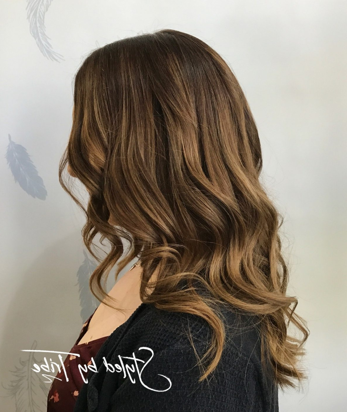 Styleddanielle – Tribe In Well Liked Balayage Hairstyles For Long Layers (Gallery 16 of 20)
