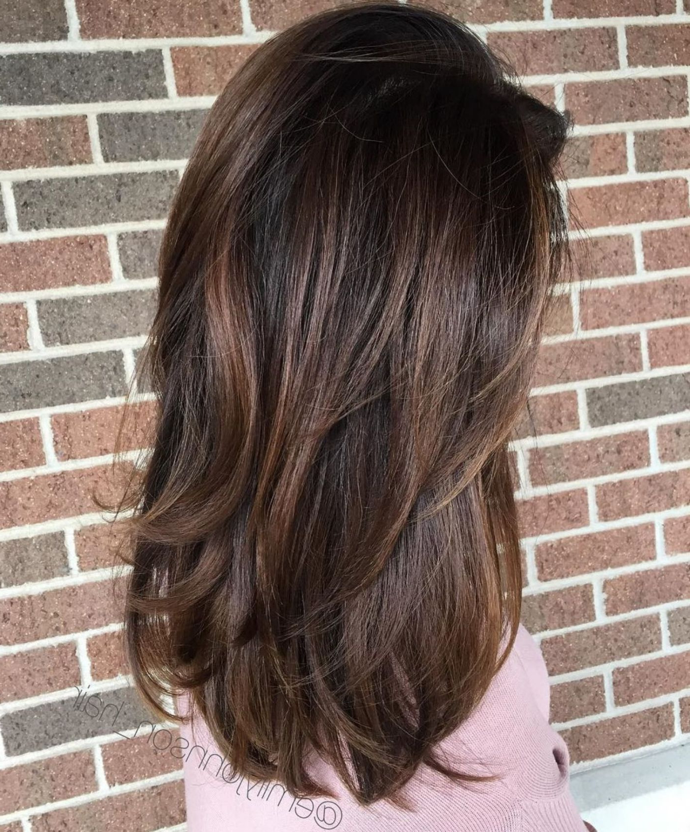 Widely Used Long Layered Light Chocolate Brown Haircuts In Hairstyles : Dark Brown Hair Medium Length Outstanding 70 Brightest (View 12 of 20)