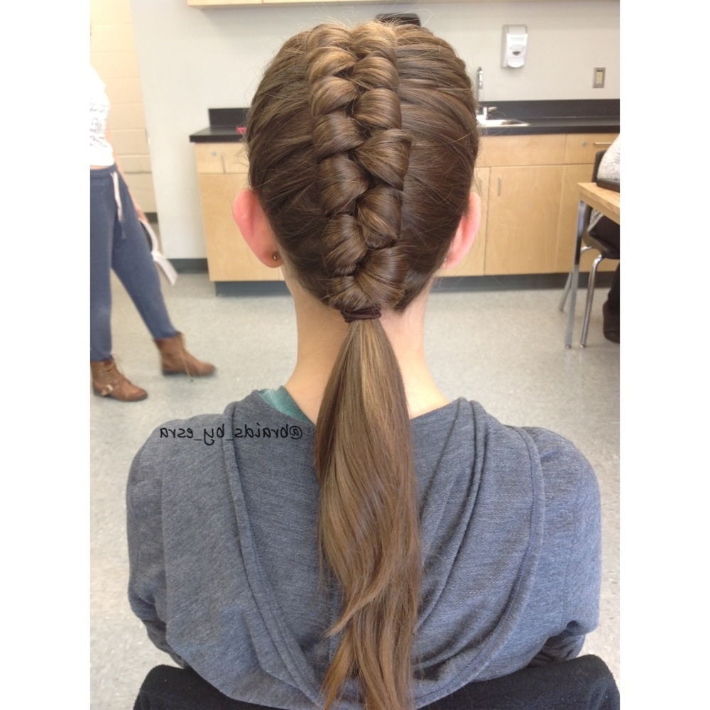 Braidsesra With Latest Infinity Braid Ponytail Hairstyles (View 3 of 20)