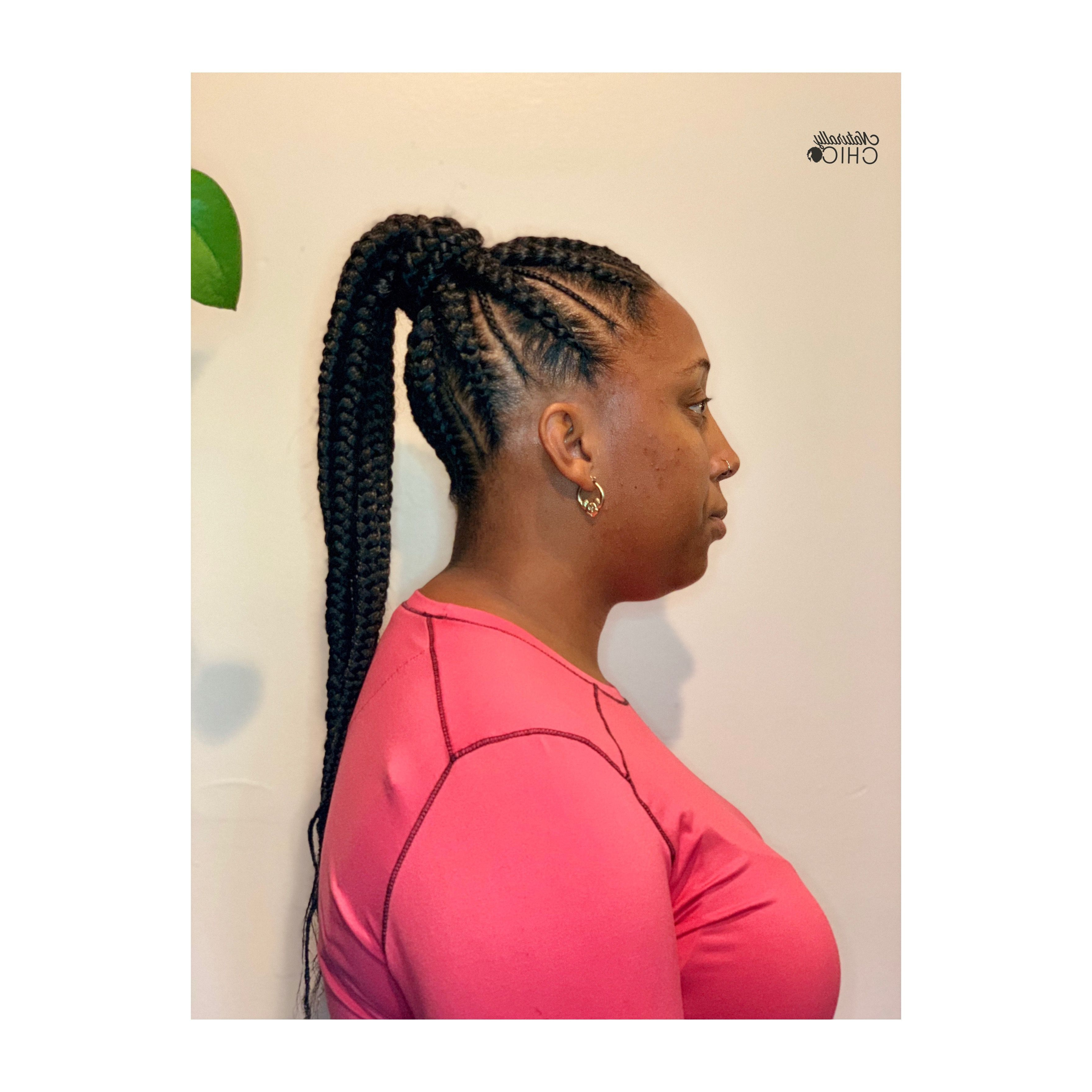 Fashion : Remarkable Chic Ponytail Hairstyles With Added Volume Inside Well Liked Chic Ponytail Hairstyles Ponytail Hairstyles (View 15 of 20)