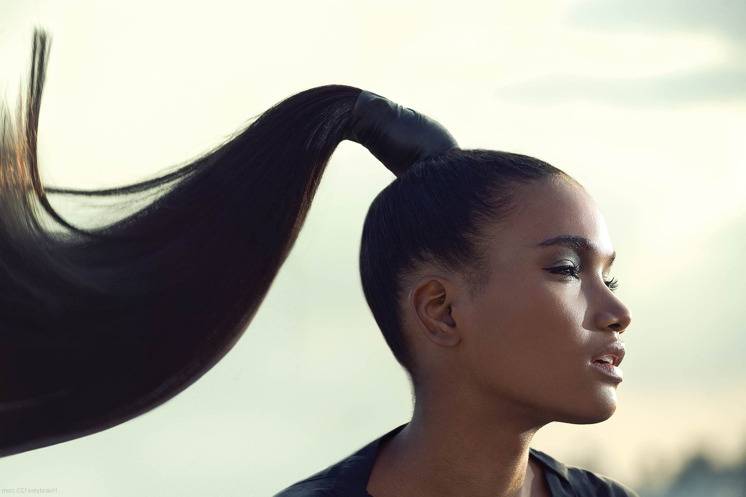 High Ponytail Tutorial—with No Bumps! – Seethru Pertaining To Trendy High Ponytail (View 7 of 20)