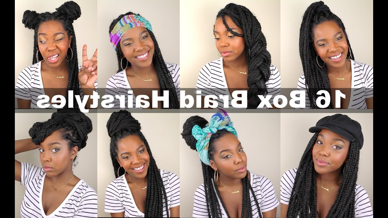 16 Box Braid Hairstyles (Gallery 5 of 20)