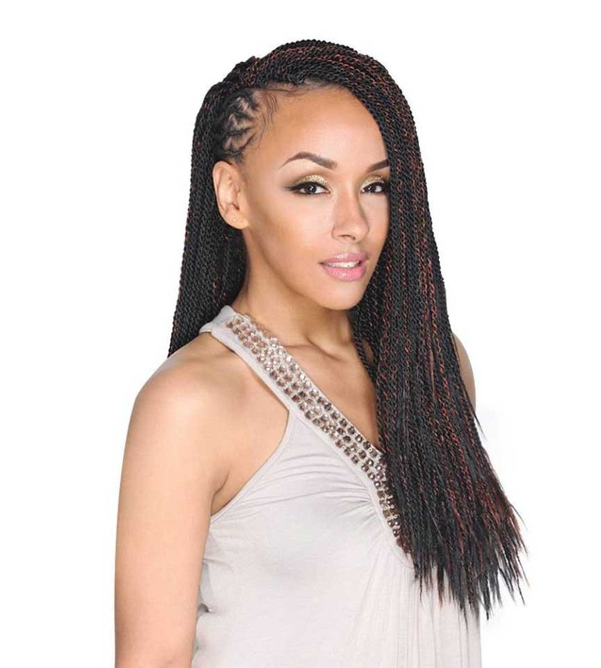 [%2020 Black Twists Micro Braids With Golden Highlights Inside Zury Sis Bulk & Braid Micro Senegalese Twist 20 Inch (100% Hand Braided)|zury Sis Bulk & Braid Micro Senegalese Twist 20 Inch (100% Hand Braided) Pertaining To 2019 Black Twists Micro Braids With Golden Highlights%] (View 16 of 20)
