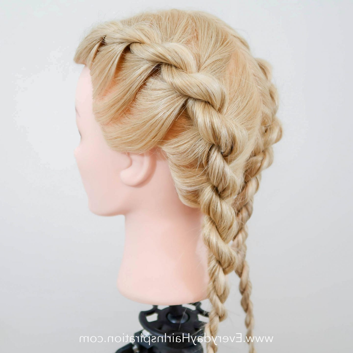 2020 Rope And Fishtail Braid Hairstyles Inside French Rope Braid Stepstep – Everyday Hair Inspiration (View 10 of 20)