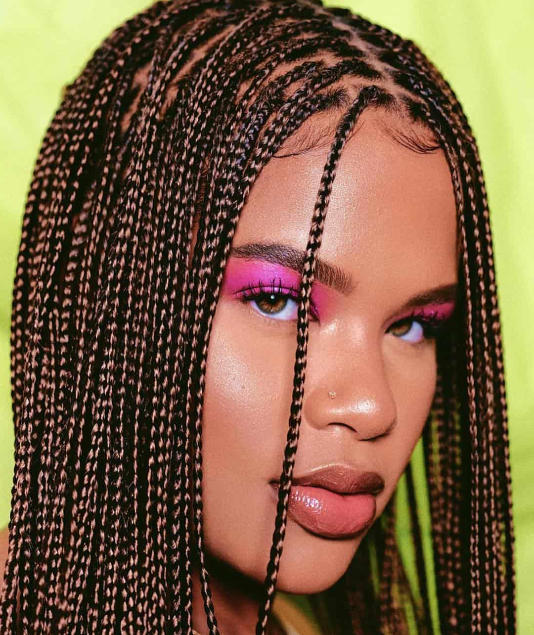 29 Magnificent Micro Braid Hairstyles For The Next Season With Regard To Current Side Swept Twists Micro Braids With Beads (View 4 of 20)