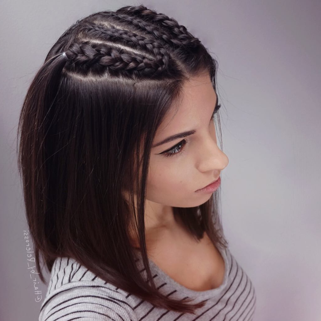 29 Swanky Braided Hairstyles To Do On Short Hair – Wild Within Favorite Long And Short Bob Braid Hairstyles (View 4 of 20)
