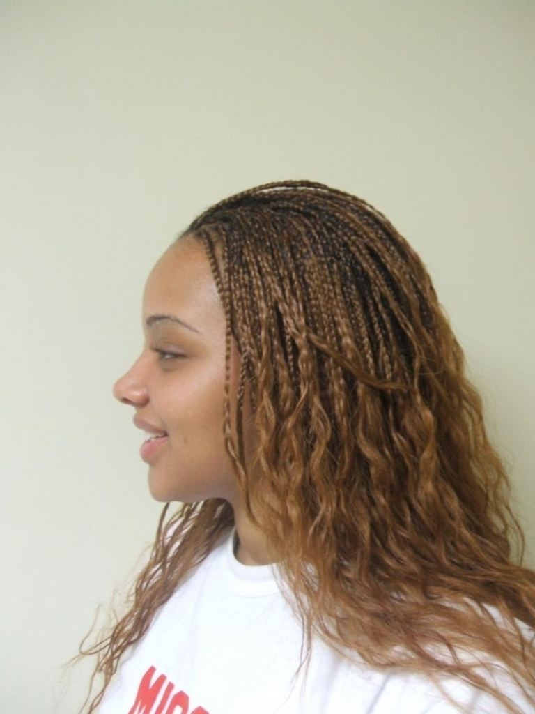 35 Micro Braids Hairstyles For African American Women Pertaining To Most Recently Released Shaved Platinum Hairstyles With Micro Braids (View 14 of 20)