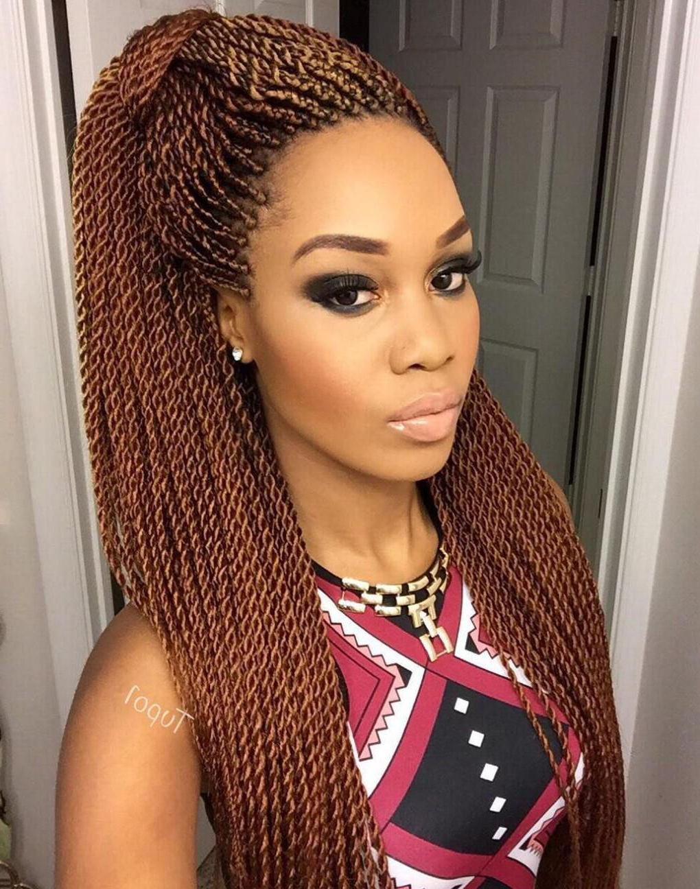 40 Ideas Of Micro Braids And Invisible Braids Hairstyles For Trendy Micro Twist Ponytail Hairstyles (View 2 of 20)