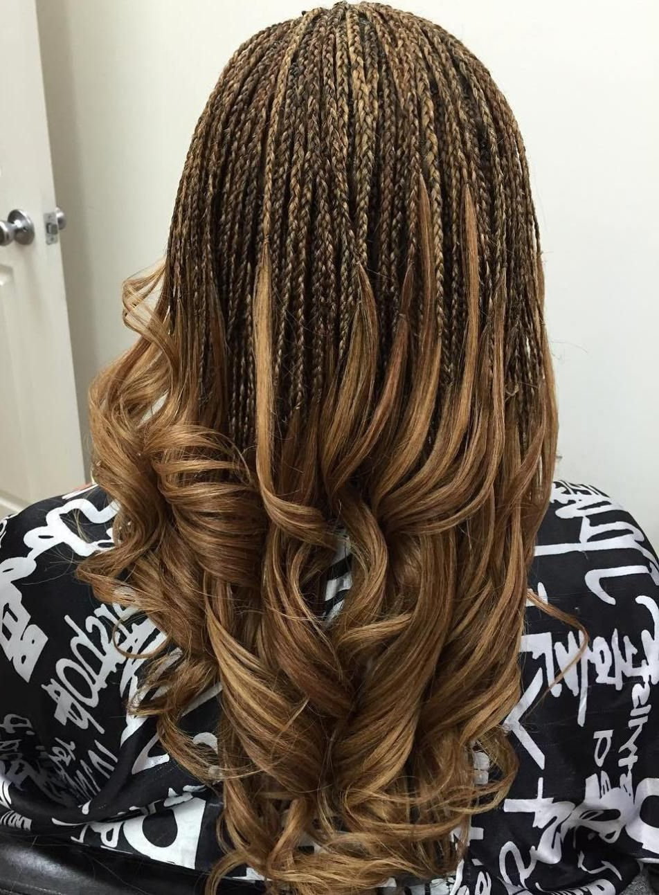 40 Ideas Of Micro Braids And Invisible Braids Hairstyles Throughout Widely Used Micro Braid Hairstyles With Curls (View 8 of 20)