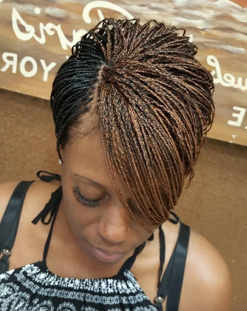Featured Photo of Zebra Twists Micro Braid Hairstyles