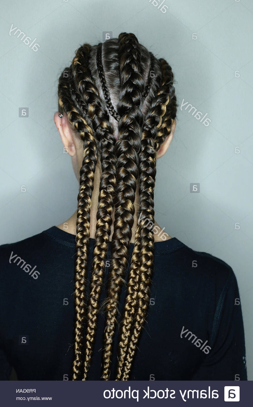 African Hair Style On European Hair, Thick And Thin Plaits Inside Popular Thick And Thin Braided Hairstyles (View 8 of 20)