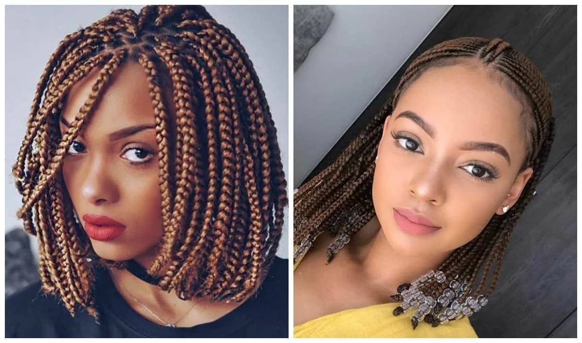 Bob Box Braids Hairstyles In 2018 ▷ Legit (View 9 of 20)