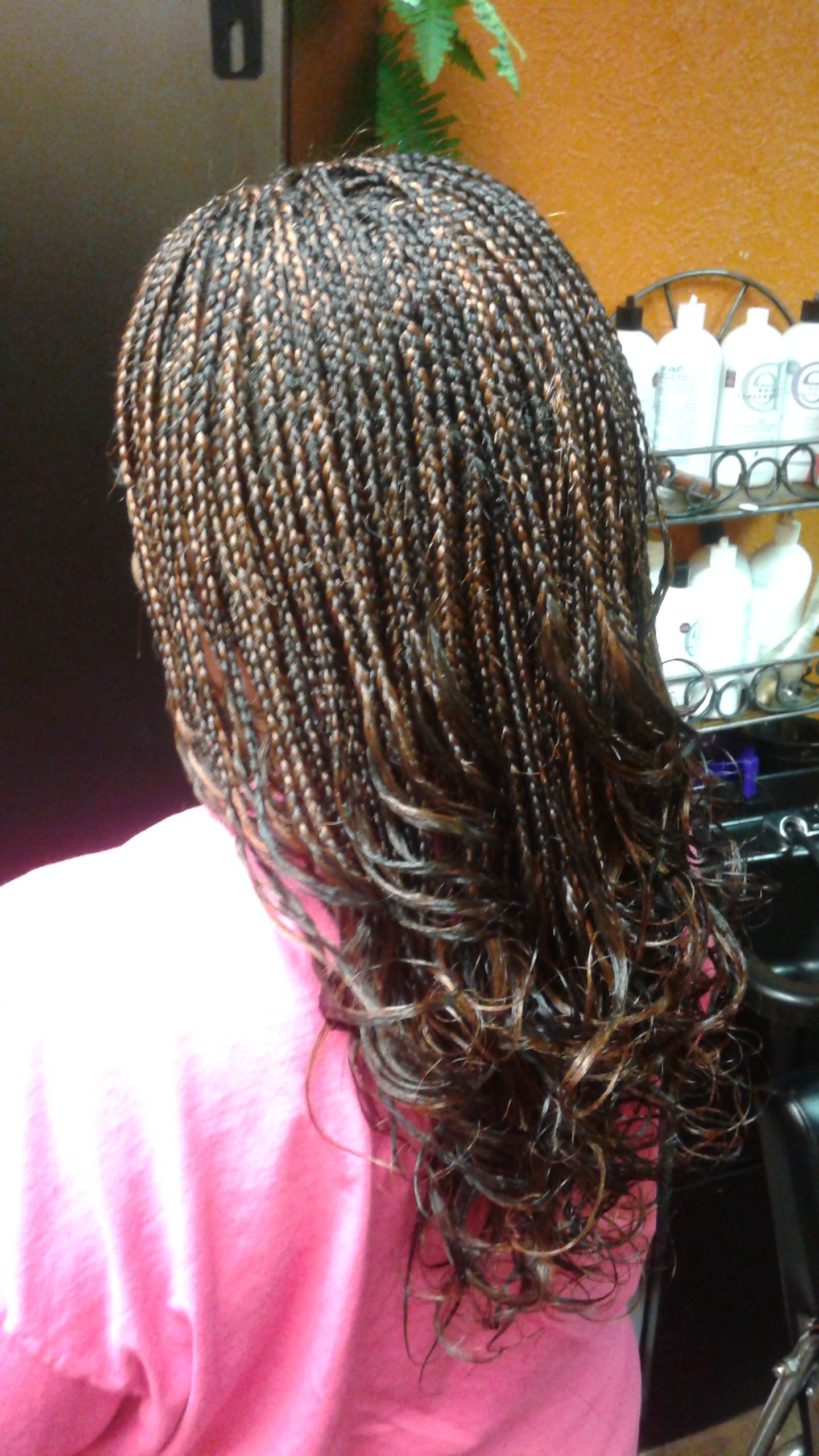 Box And Single Braids In  (View 7 of 20)