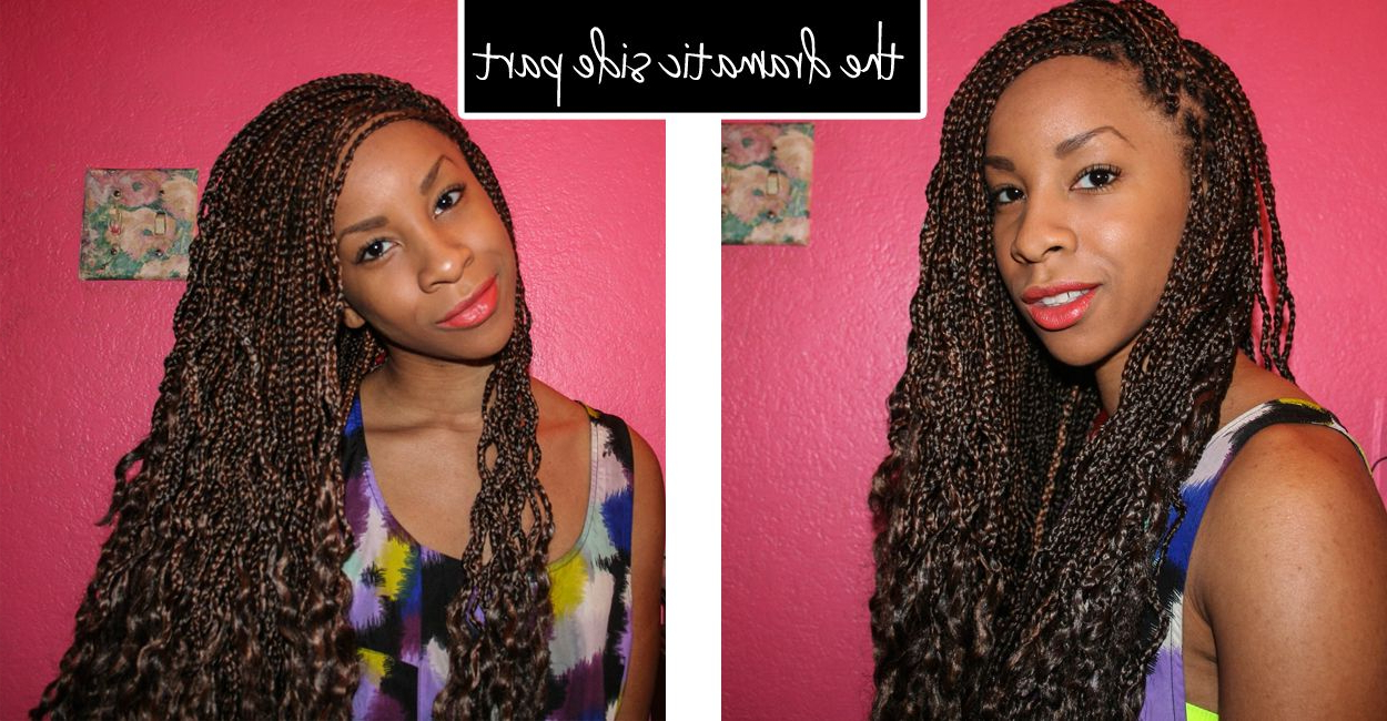 Box Braid Style – Dramatic Side Part (View 9 of 20)