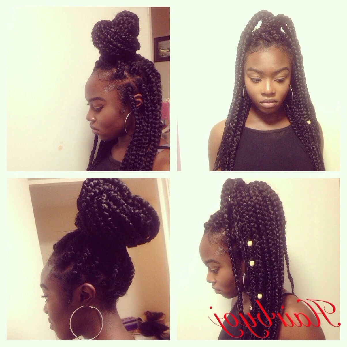 Box Braids « Hairbyoj Inside Most Popular High Half Up Bun Invisible Braids (View 9 of 20)